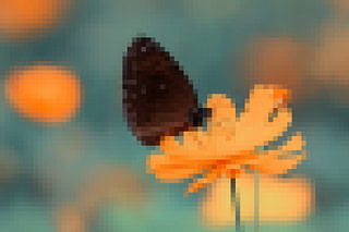 pixelated-less-butterfly